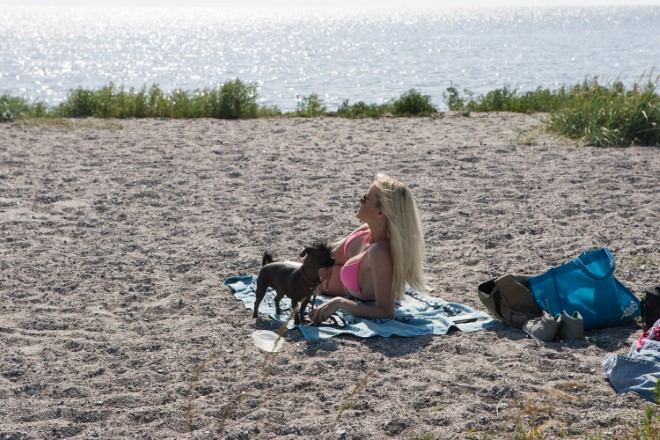 Barbara Zatler beach with dog (HiRes) 7