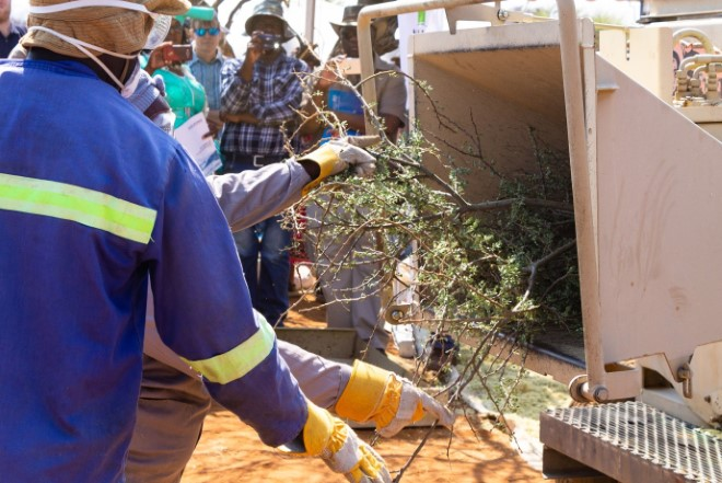 Biomass Technology Expo - live harvesting demonstration 2